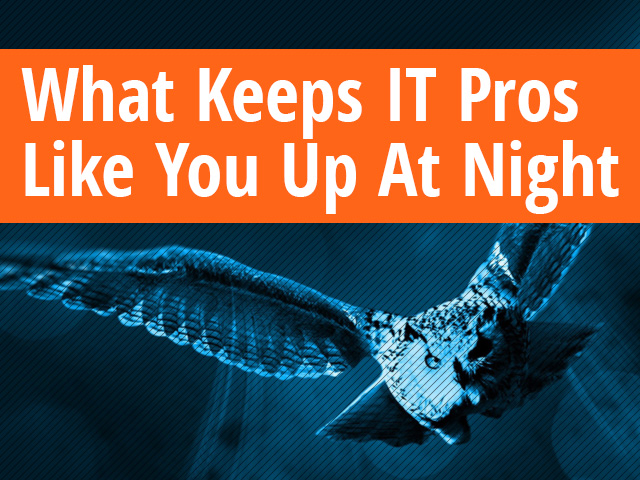 What Keeps IT Pros Like You Up At Night