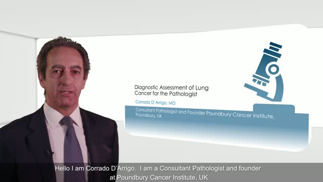 Diagnostic Assessment of Lung Cancer for the Pathologist