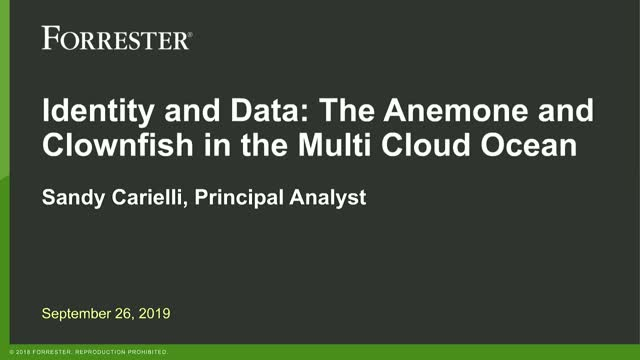 Identity and Data: The Anemone and Clownfish in the Multi Cloud Ocean