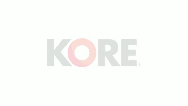 Introduction to KORE Europe (7 minutes)