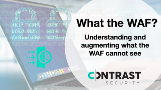 What the WAF?  Understanding and augmenting what the WAF cannot see