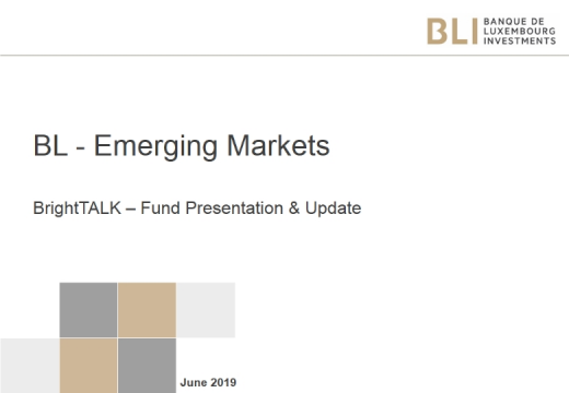 Investments in emerging market equities