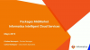 Informatica Intelligent Cloud Services for Partners