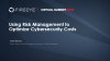 Using Risk Management to Optimize Cybersecurity Costs
