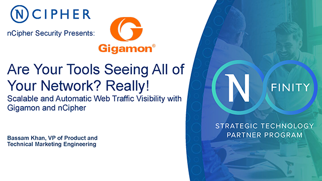 Scalable web traffic visibility with Gigamon and nCipher