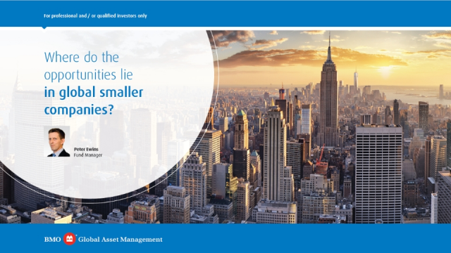 Where do the opportunities lie in global smaller companies?