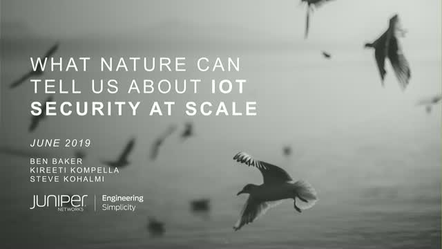 What Nature Can Tell Us About IoT Security at Scale