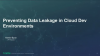 Preventing Data Leakage in Cloud Development Environments