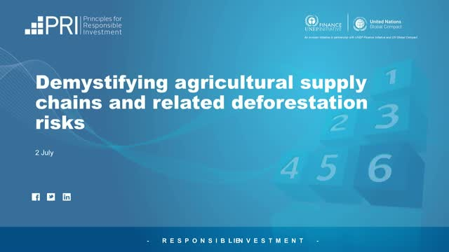 Demystifying agricultural supply chains and related deforestation risks