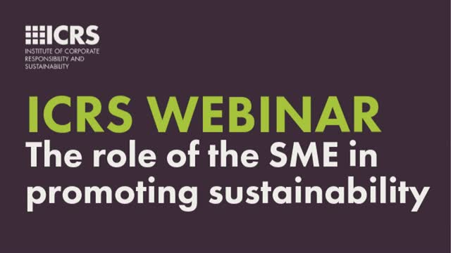 The role of the SME in promoting sustainability