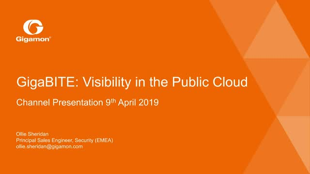 Visibility in the Public Cloud