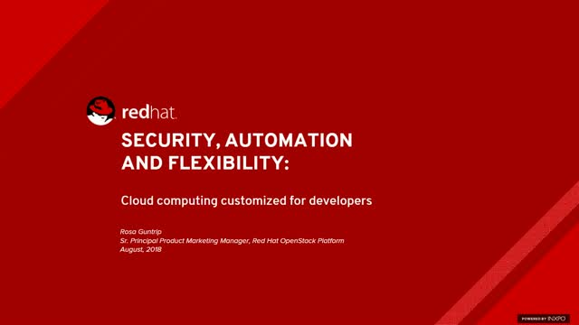 Security, Automation and Flexibility: Cloud Computing Customized for Developers