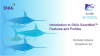 Introduction to SNIA Swordfish™ Features and Profiles