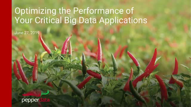 Optimizing the Performance of Your Critical Big Data Applications