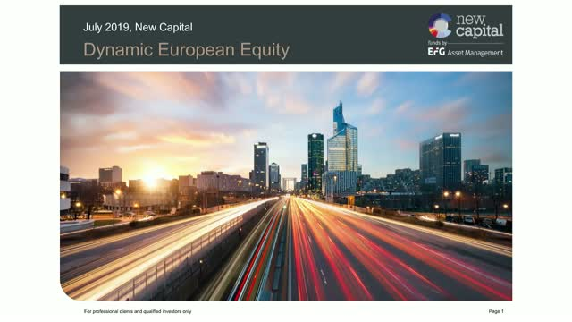 Dynamic European Equity - Q2 review
