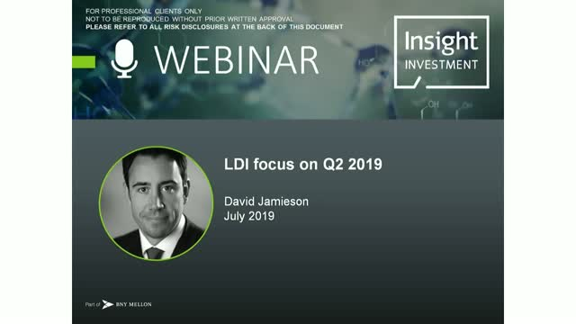 LDI review and outlook | July 2019
