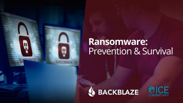 Ransomware: Prevention and Survival