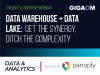 Data Warehouse + Data Lake: Get the Synergy, Ditch the Complexity