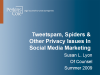 Tweetspam, Spiders&other Privacy Issues in Social Media Marketing