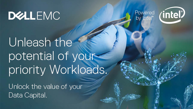 Unleash the potential of your Priority Workloads