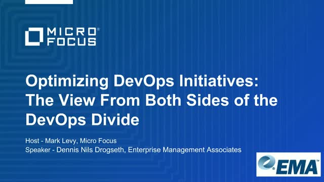 Optimizing DevOps Initiatives: The View from Both Sides of the DevOps Divide