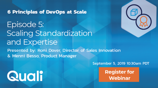Scaling DevOps Episode 5:  Scaling standardization and expertise