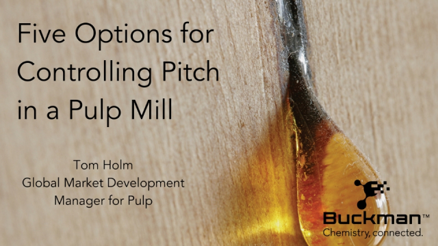 Five Options for Controlling Pitch in a Pulp Mill