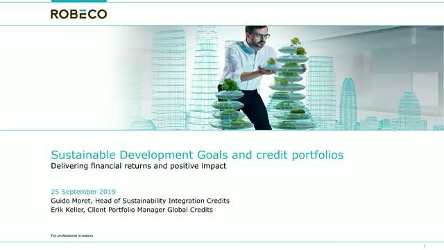 SDGs and credit portfolios, delivering financial return and positive impact