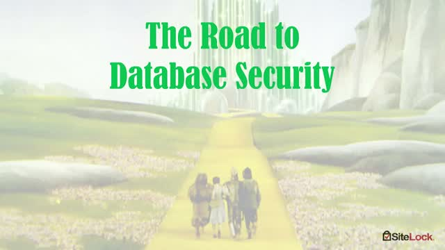 Website Security 101 Databases: Threats and Solutions