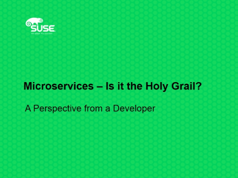 Microservices – Is it the Holy Grail? A Perspective from a Developer