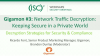 Gigamon #3: Network Traffic Decryption: Keeping Secure in a Private World