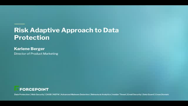 A Risk Adaptive Approach to Data Protection