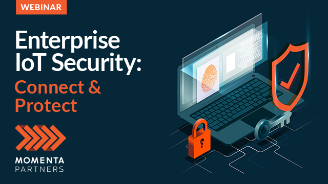 Enterprise IoT Security: Connect and Protect