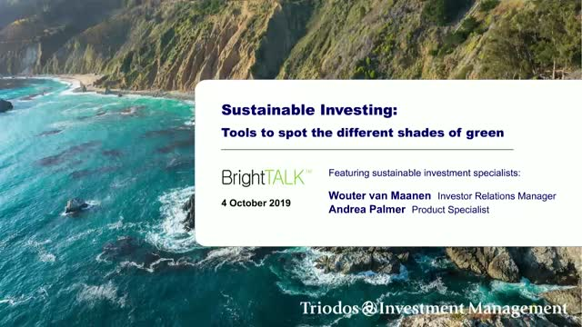 Sustainable Investing: Tools to spot the different shades of green