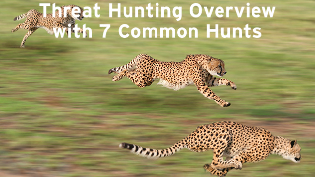 Threat Hunting: What Are The 7 Most Common Hunts?