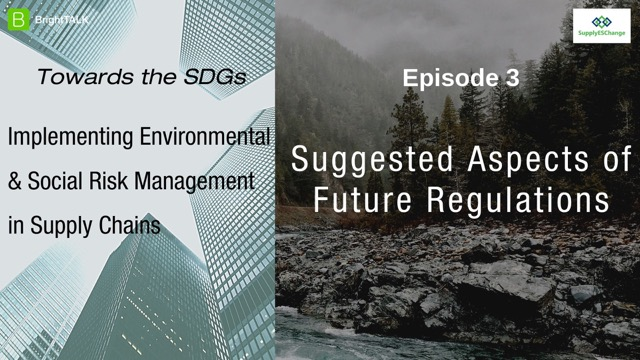 Towards the SDGs: Suggested Aspects of Future Regulations