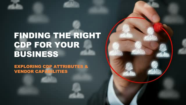 Finding the Right CDP for Your Business