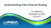 Understanding Fibre Channel Scaling
