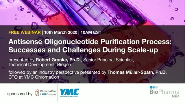 Antisense Oligonucleotide Purification Process: Successes and Challenges During