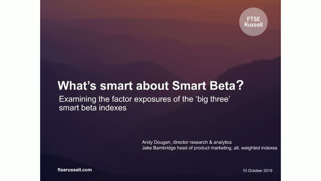What's Smart about Smart Beta?
