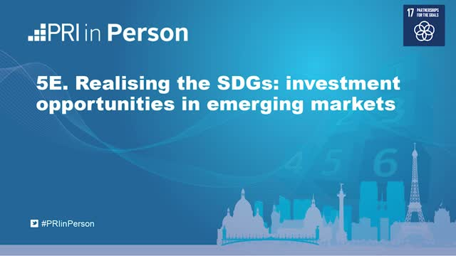 PIP19 - Realising the SDGs: Investment opportunities in emerging markets