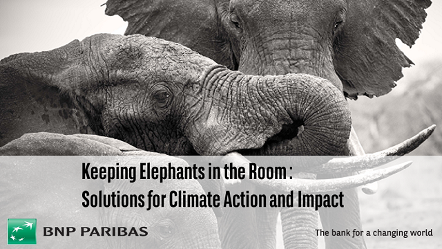Keeping Elephants in the Room: Solutions for Climate Action and Impact