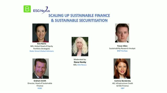 Panel Discussion - Scaling up Sustainable Finance and Sustainable Securitisation