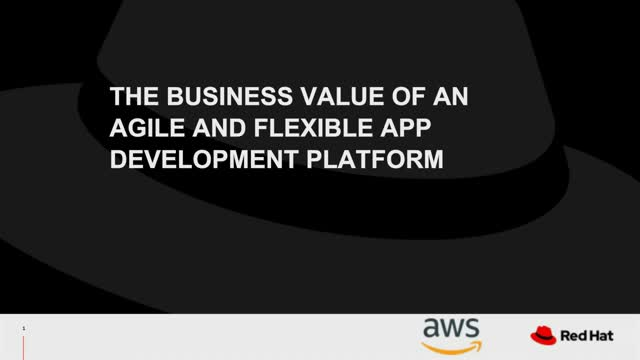 Business Value of an Agile Platform for Developing Application OpenShift on AWS