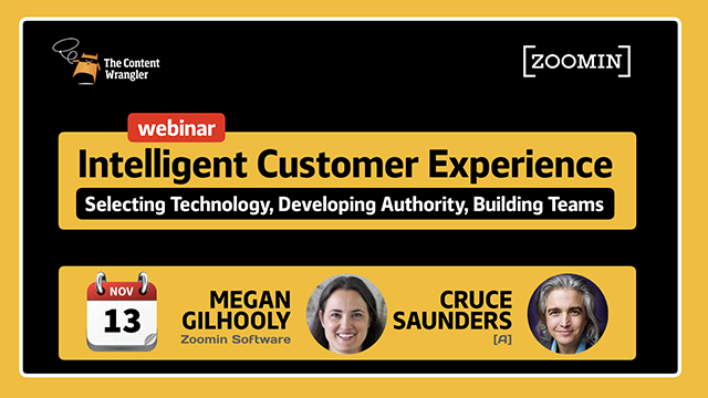 Intelligent Customer Experience: Select Technology; Build Authority and Team