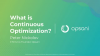 What Is Continuous Optimization?