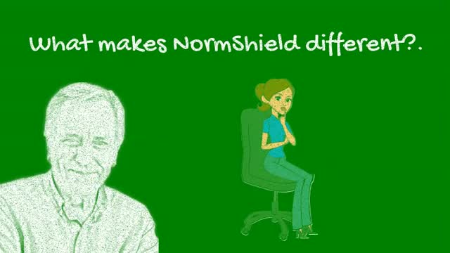 What Makes NormShield different from the competition