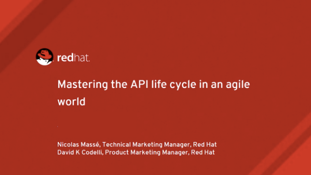 Mastering the API Lifecycle in an Agile World