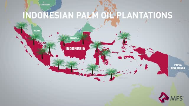 ESG Integration in Action: Palm Oil