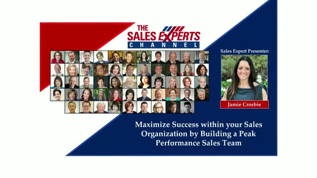 Maximize Success by Building a Peak Performance Sales Team